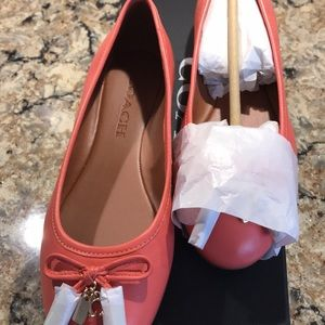 Authentic Coach Coral Flats New Women's Size 5